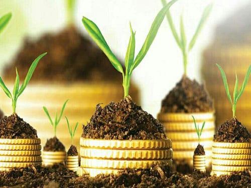 مدیریت، اقتصاد و توسعهمدیریت، اقتصاد و توسعه