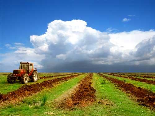 دومین همایش ملی علوم محیط زیست، کشاورزی ومنابع طبیعی