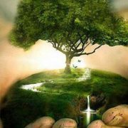 اولین کنگره بین المللی آب، خاک و علوم محیطیاولین کنگره بین المللی آب، خاک و علوم محیطی