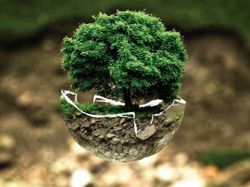 نخستین کنفرانس ملی ژئوتکنیک زیستمحیطینخستین کنفرانس ملی ژئوتکنیک زیستمحیطی