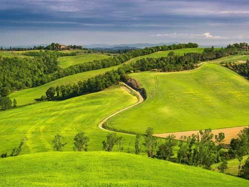 اولین کنفرانس ملی توسعه پایدار در علوم کشاورزی و منابع طبیعی با محوریت فرهنگ زیست محیطیاولین کنفرانس ملی توسعه پایدار در علوم کشاورزی و منابع طبیعی با محوریت فرهنگ زیست محیطی