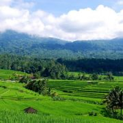 چهارمین همایش ملی برنامه ریزی، حفاظت حمایت از محیط زیست وتوسعه پایدارچهارمین همایش ملی برنامه ریزی، حفاظت حمایت از محیط زیست وتوسعه پایدار